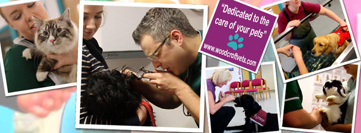 Woodcroft Veterinary Group cover