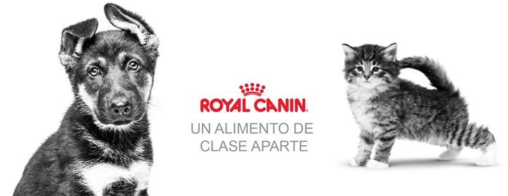 Royal Canin PR, Inc. cover