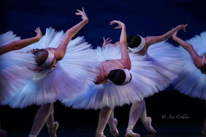 Dance Alive National Ballet cover