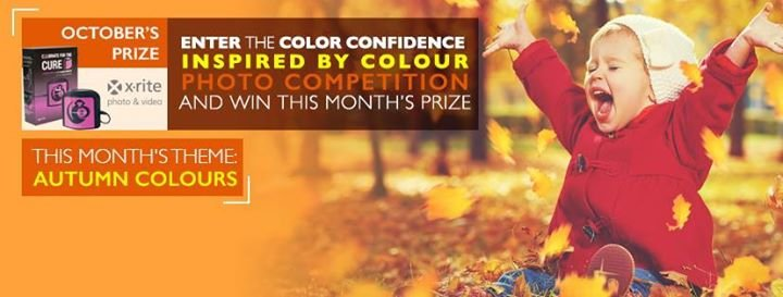 Color Confidence cover