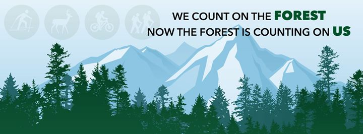 Deschutes Collaborative Forest Project cover