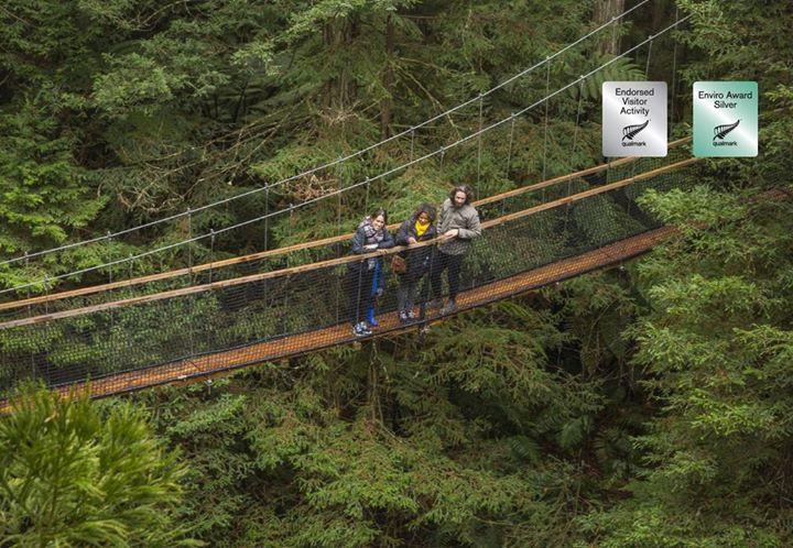 Redwoods Treewalk Rotorua cover