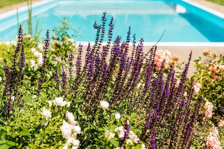 Garni Hotel Am Meilenstein Parcines Italy