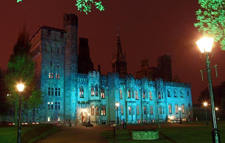 Cardiff Castle / Castell Caerdydd cover