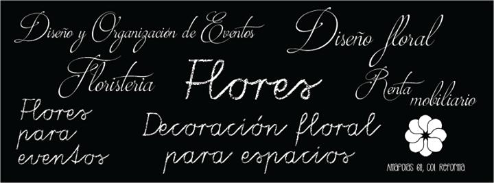 María Eventos cover