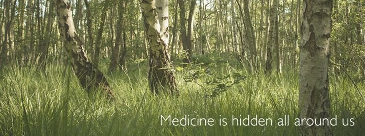 Earth Medicines cover