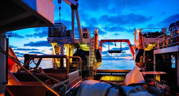 Havforskningsinstituttet cover