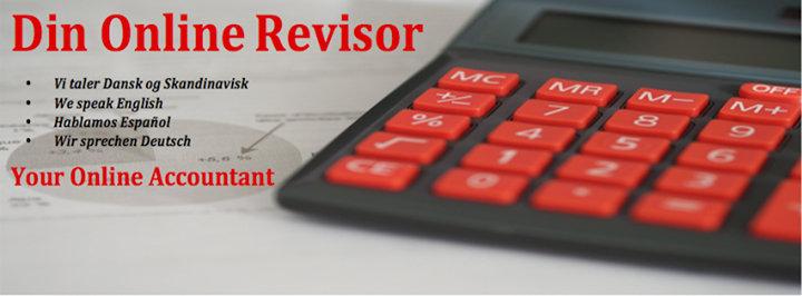 Din Online Revisor cover