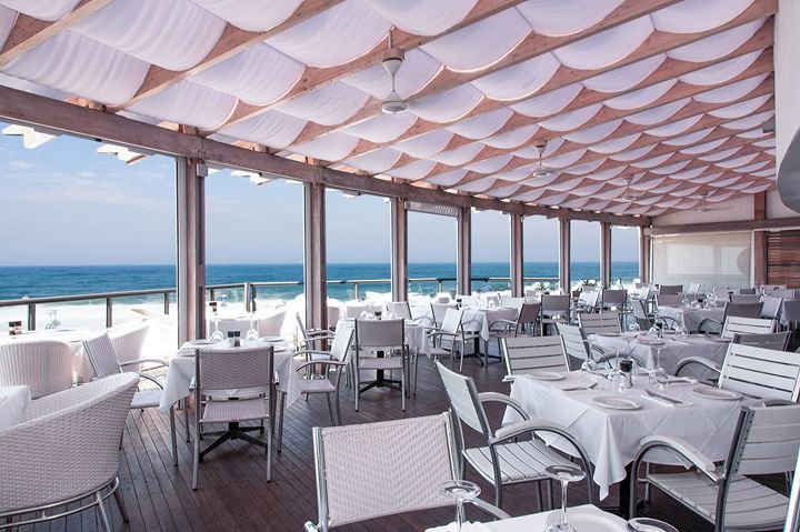 Mundo Vida Restaurant cover