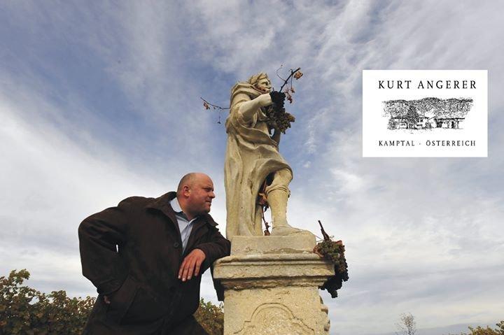 Kurt Angerer Weingut cover