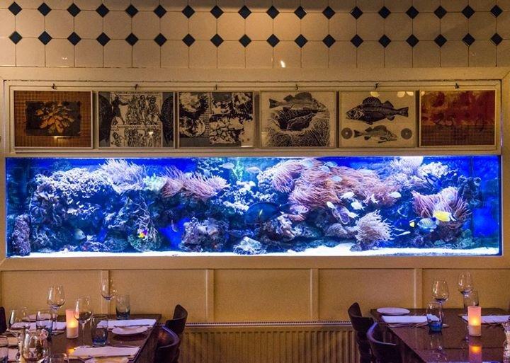 Lucius seafood restaurant cover