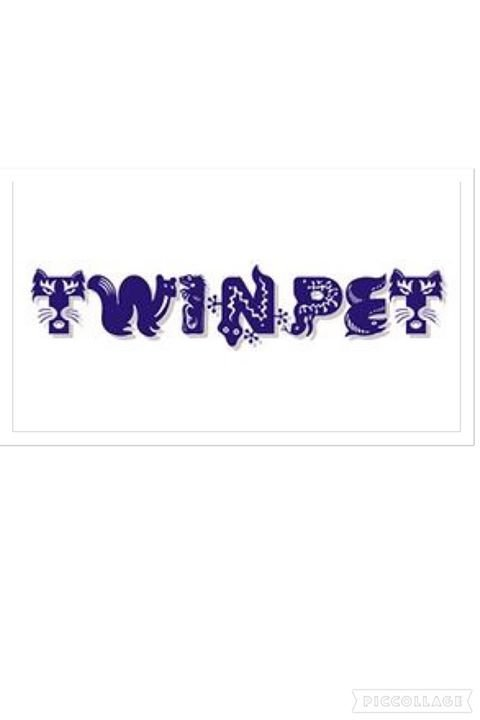 TwinpeT cover
