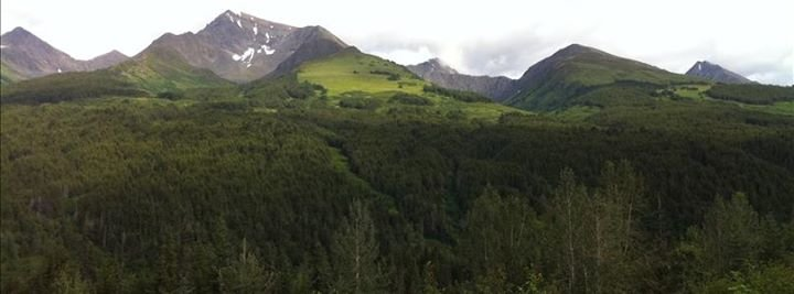 Property Alaska by John Collinge cover