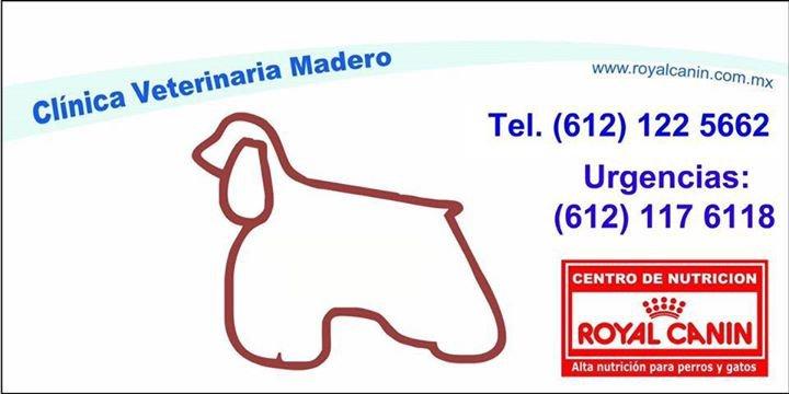 Clínica Veterinaria Madero cover