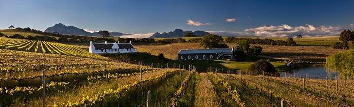Aaldering Vineyards & Wines - Luxury Lodges cover