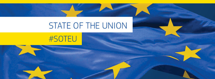 EU i Danmark cover