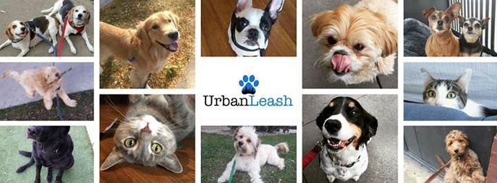 Urban Leash cover