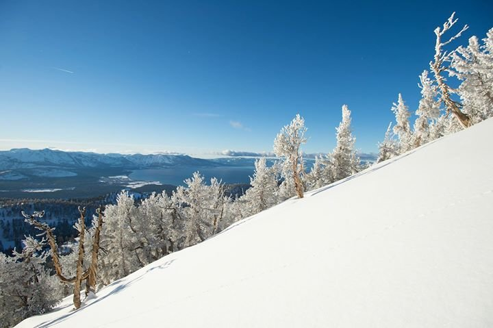 Snow.com cover