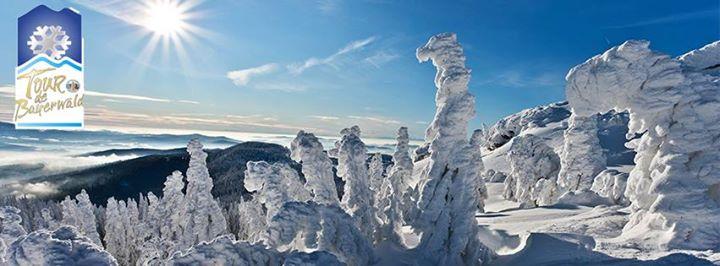 Tour de Bayerwald / Arber Skitour cover