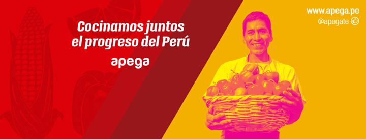 APEGA Sociedad Peruana de Gastronomía cover
