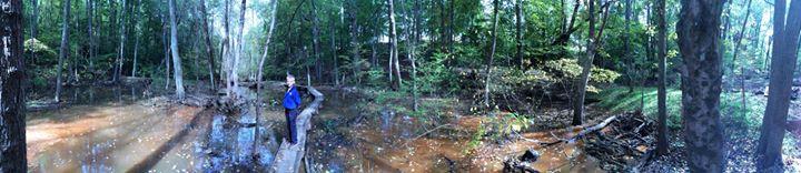 The Severn Riverkeeper Program cover