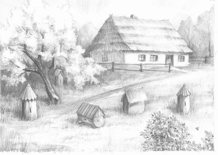 Miody Polskie - dzielimy się wiedzą o prawdziwym, naturalnym miodzie cover