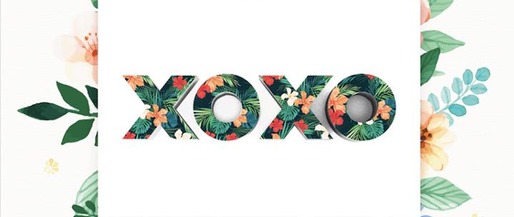 XOXO Party cover