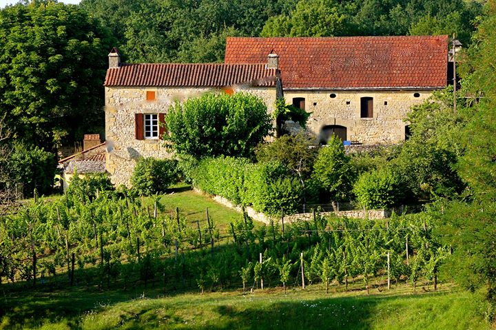 Domaine LaLande cover