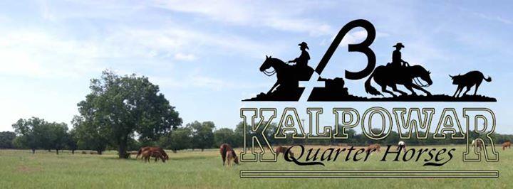 Kalpowar Quarter Horses cover