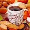 Village Coffee Company