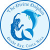 Divine Dolphin