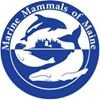 Marine Mammals of Maine