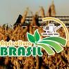 Agricultura Brasil