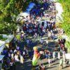 Downtown Festival & Art Show (Gainesville, FL)