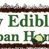 My Edible Yard Urban Homestead