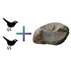 2 Birds with 1 Stone