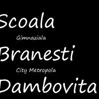 Scoala Gimnaziala Branesti, Dambovita