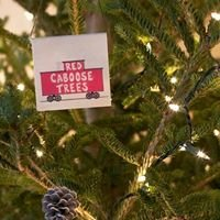 Red Caboose Christmas Trees