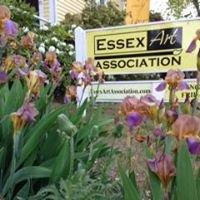 Essex Art Association