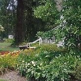 Kelly's Tree & Landscaping