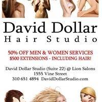 David Dollar Hair Studio