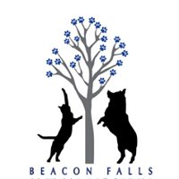 Beacon Falls Animal Hospital
