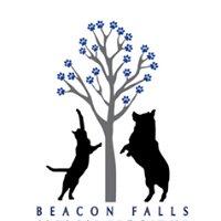 Beacon Falls Animal Hospital