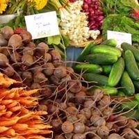 New England produce market. Boston, Ma.