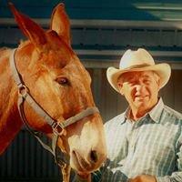 Tindell's Horse & Mule School