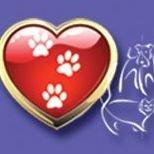 A Rainbow Crossing Pet Memorial Services