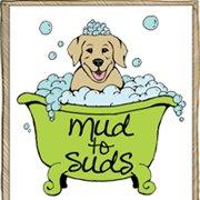 Mud To Suds