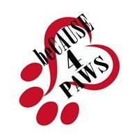 Because 4 PAWS- Animal Rescue