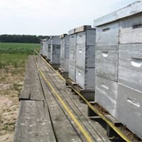 The Foundation for the Preservation of Honey Bees