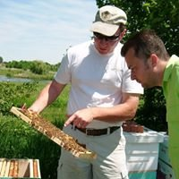 Belfry Bees Honey